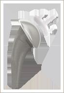 Short stem Total Shoulder Arthroplasty